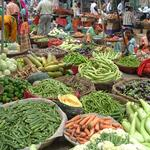 Also in Udaipur, this market shows the astonishing diversity of vegetables available in India. The quality and variety often exceed what we find in most American grocery stores.